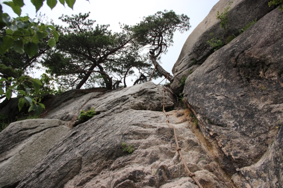 The ropes we had to climb to get over this ROCK!