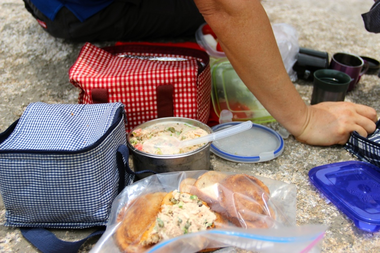We had an elaborate lunch packed for us by my aunt. It included mini ice packs for the mini-coolers!